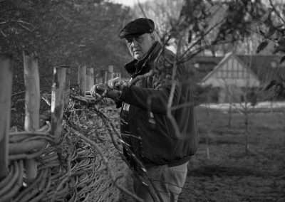 Baz_Scampion_Weaving_fence