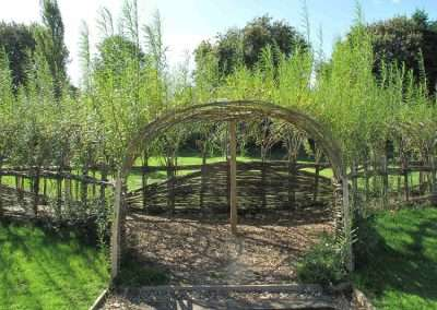 Burnham_Willow_Arch_6