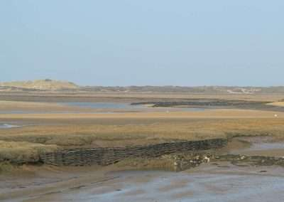Burnham_Willow_Erosion_Project