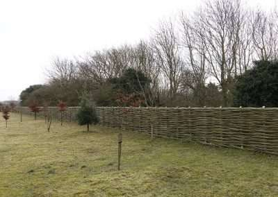 Burnham_Willow_Fence