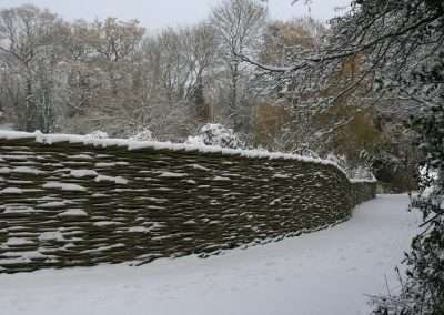 Burnham_Willow_Fence_Snow