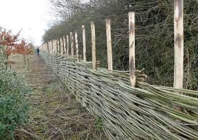 Burnham_Willow_Fencing_7