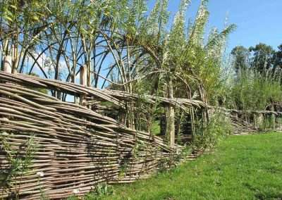 Burnham_Willow_Tunnel_Norwich2