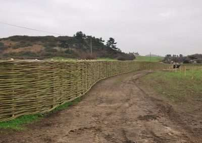 Burnham_willow_fencing_64